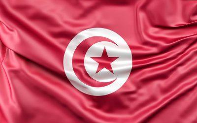Calystene et la Tunisie